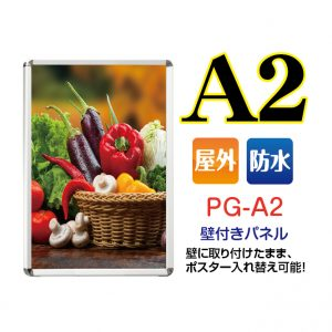 PG-A2