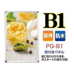 PG-B1