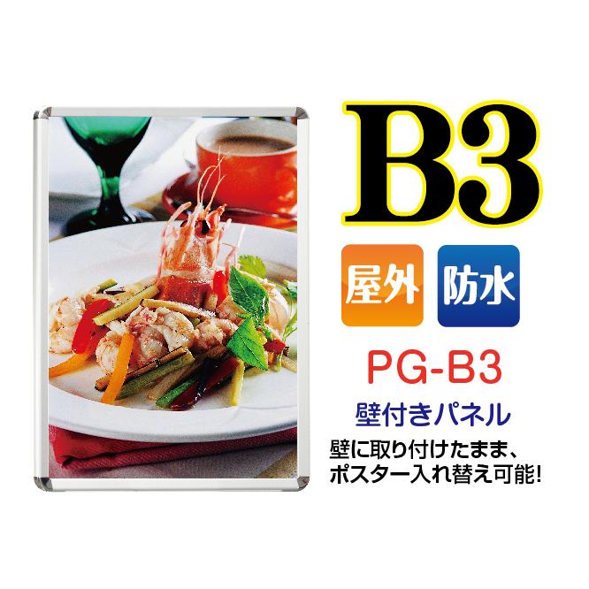 PG-B3