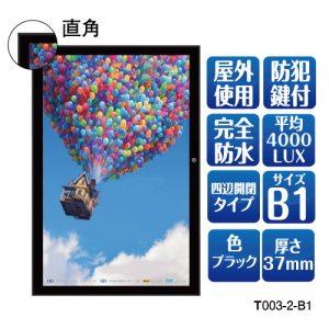 T003-2-B1